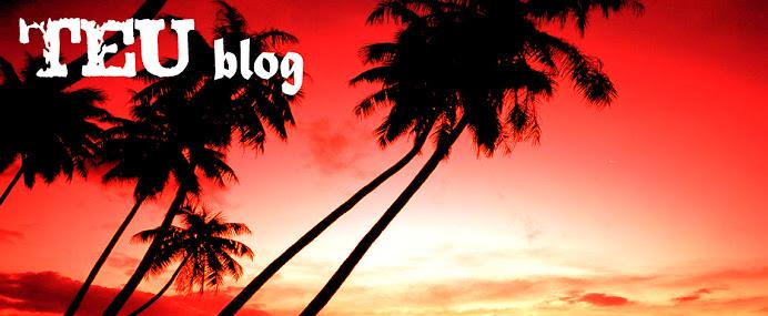 TEUblog
