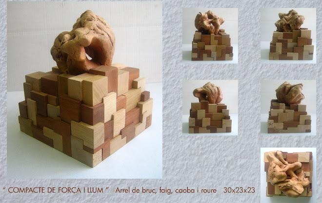 lamina  65  2007