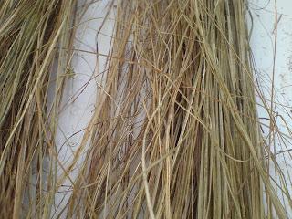Biomimetica e materiali fibre naturali for Fibre naturali