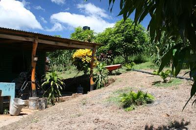 033 - October/November in Popoyo Nicaragua