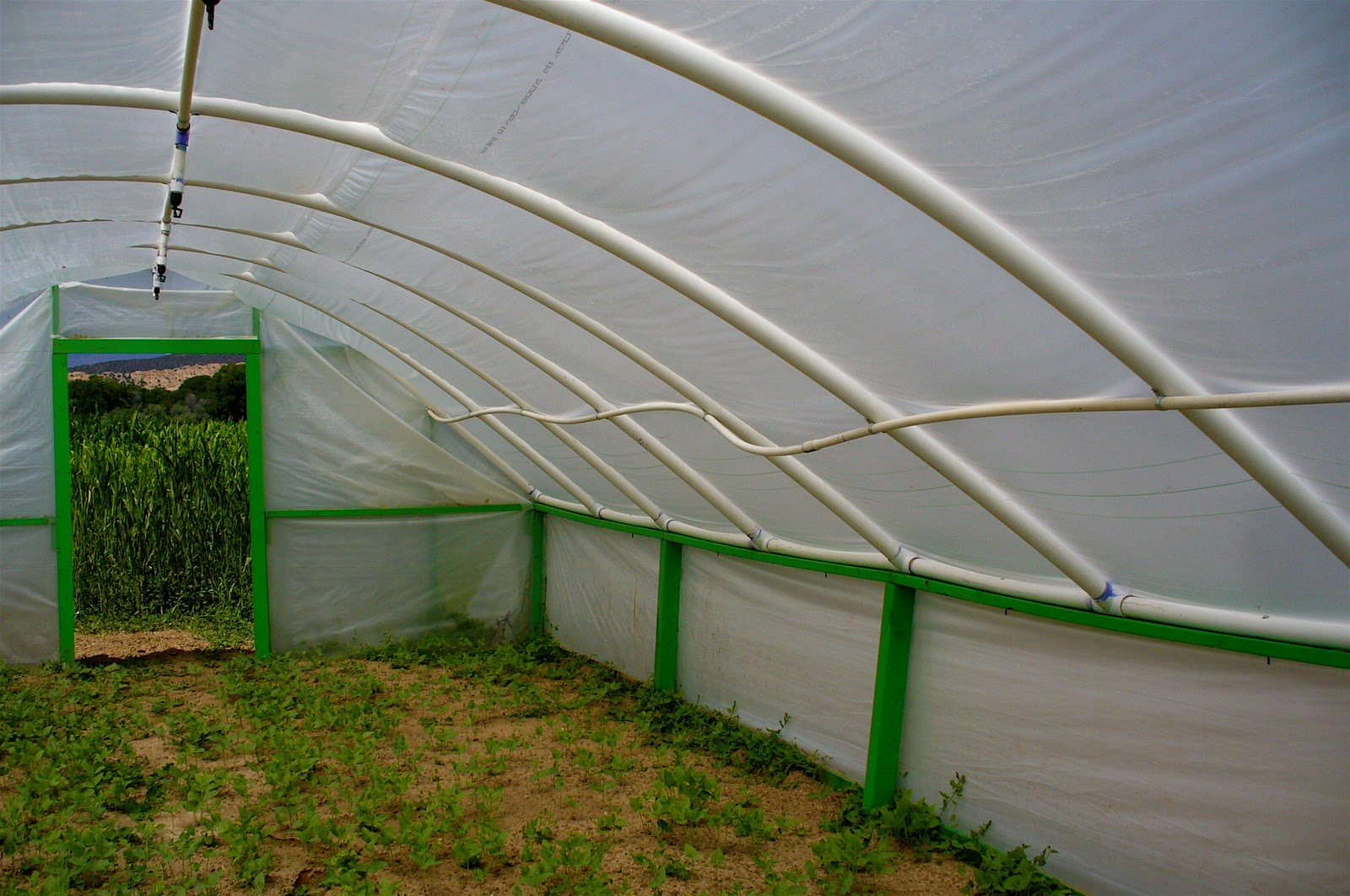 Alt Build Blog Hoop Houses