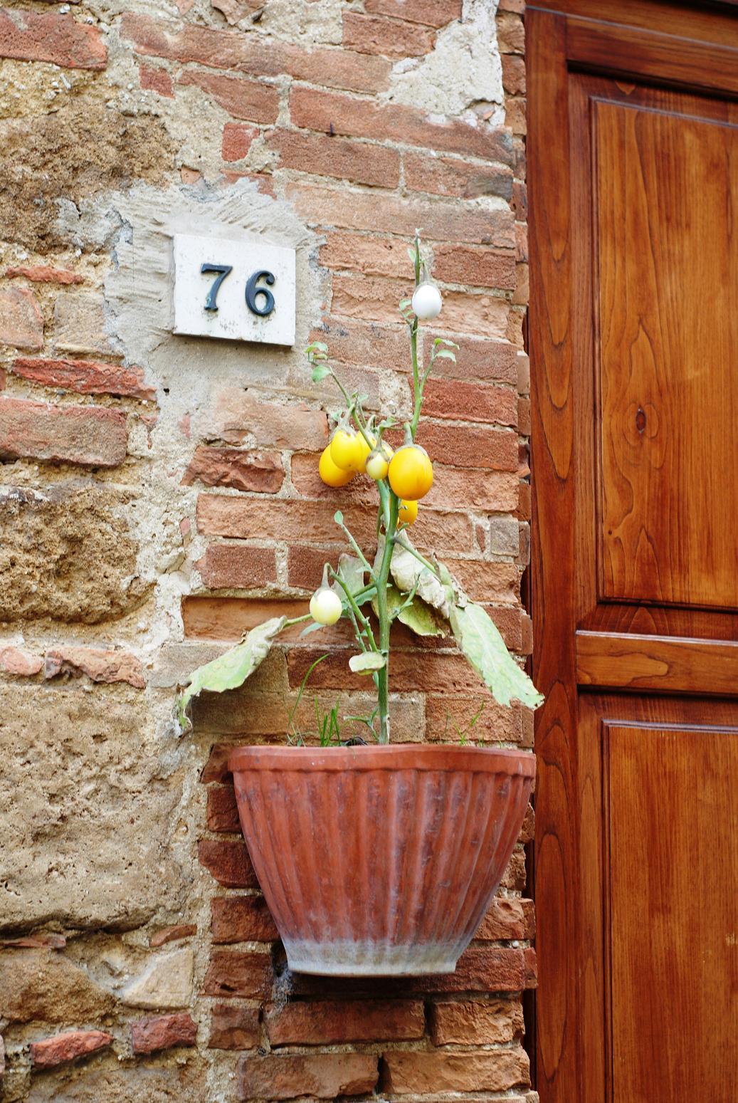 & March bread: Tuscan Doorways
