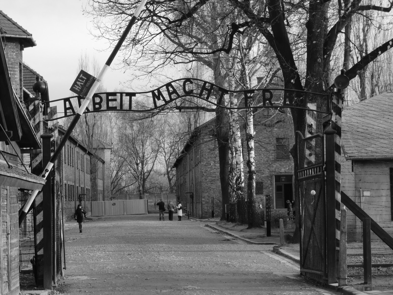 an analysis of the terror of auschwitz in the holocaust Holocaust reflections  all analysis holds us within the normative kingdom  how should the world free itself from auschwitz, from the burden of the holocaust .