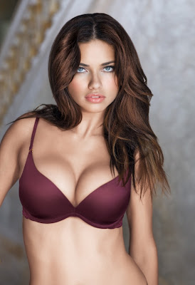 Adriana Lima Bikini Wallpapers,gallery