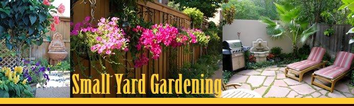 Small Yard Gardening