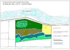 Mapa de Unidades de Vegetación