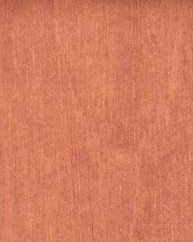 Algumas madeiras usadas na fabricação de instrumentos: