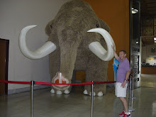 Mammoth Exhibit