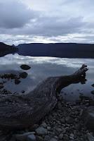 Dusk at Lake St Clair, Tasmania