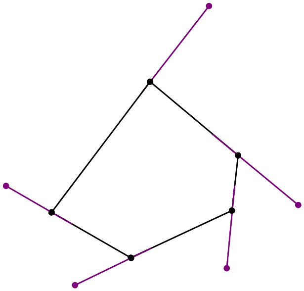 Median don steward mathematics teaching polygon angles Exterior angle of a 12 sided polygon