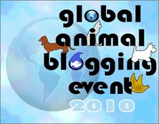 WE PARTICIPATED IN TWINKIE'S 2010 GLOBAL ANIMAL BLOGGING EVENT
