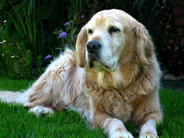 SPENCER (HOOTBH) - March 1, 1998 – February 17, 2009 - OVER THE RAINBOW