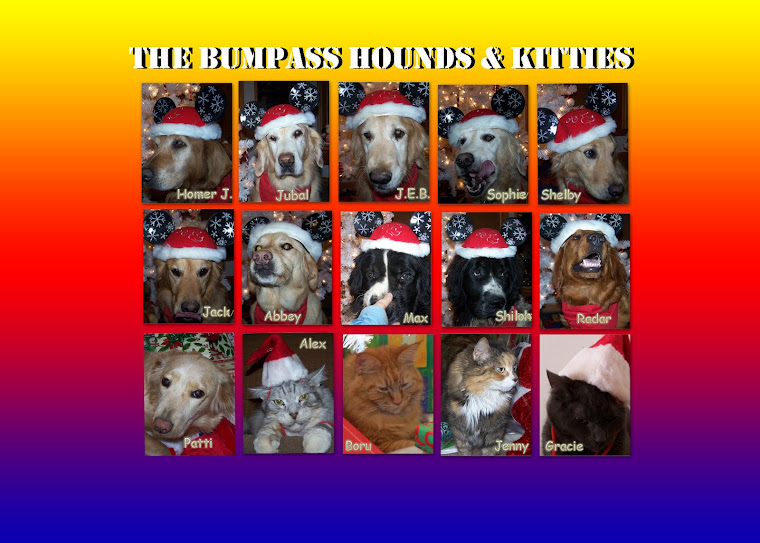 THE BUMPASS HOUNDS (and Kitties)