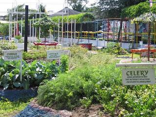 Lost Eden Herb Garden