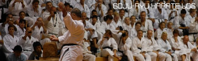 Goju-Ryu Karate Training Log