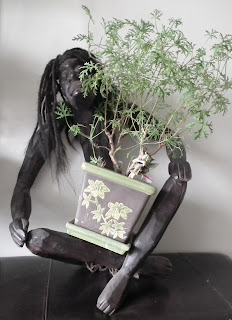 Thinking handcarved cannibal with Skeleton Rose bonsai