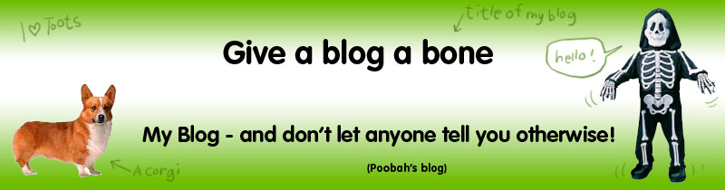 Give a blog a bone