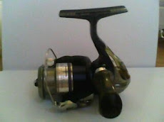 Shimano Nexave 1000