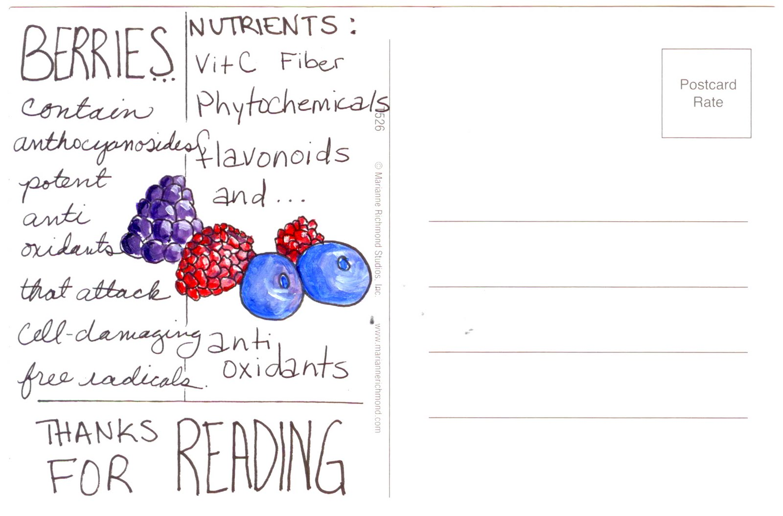 [Berries+PostCard.jpg]