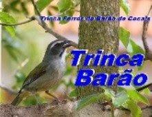 TRINCA BARÃO!!!