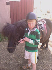 A new horsefan. Nils and Asterix!