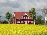 Ein Stückchen Schweden zum Kaufen