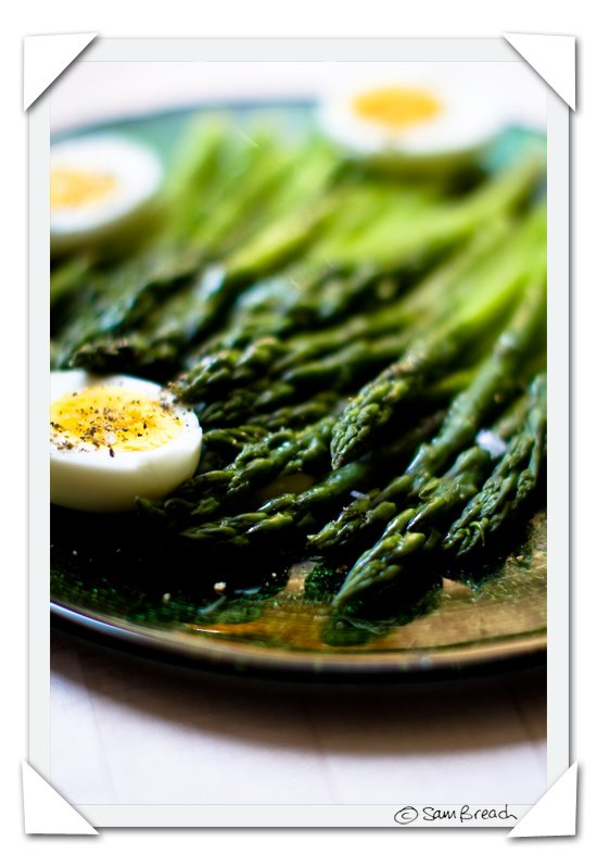 picture photograph image pasture raised eggs and asparagus 2008 copyright of sam breach http://becksposhnosh.blogspot.com/