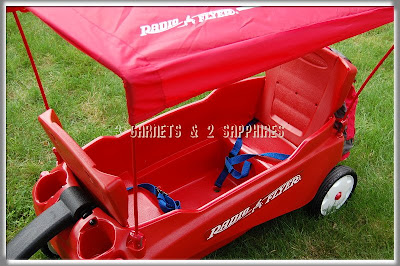 Wagon Canopy - By Radio Flyer - Compare Prices, Reviews and Buy at