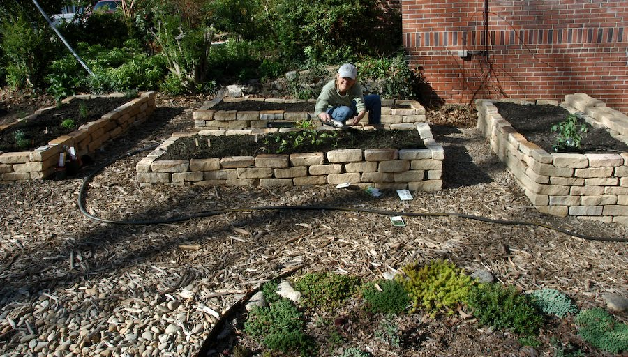 Natural Gardening: May 2010
