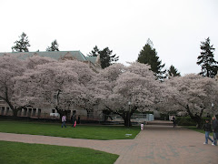 "UW ""The Quad"""
