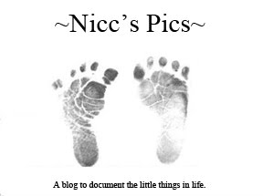 ~Nicc's Pics~