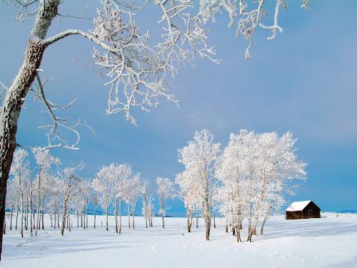 Foto musim dingin terindah
