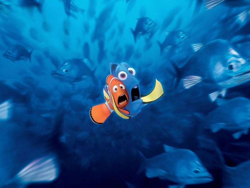 [Nemo+Asustado_800.jpg]