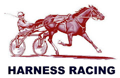 Drawing of Standardbred Trotter, Harness Racing Art