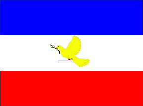 UDP Flag