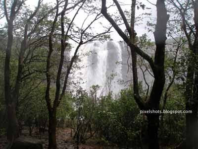 view of athirapally waterfalls from forest,athirapally photos,waterfalls pictures,kerala biggest waterfalls,kerala tourism,thrissur tourist spots