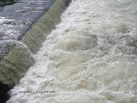 south-indian-rivers,kerala-river-photos,river-nemes,river-dams