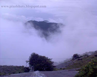 munnar-mist-photos,tourtrip-photos-from-munnar-kerala,dense  fog in munnar kerala hiding mountains behind the mist
