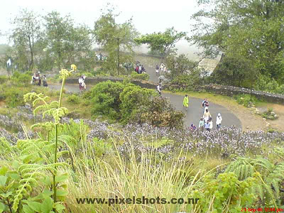 munnar-rajamala-walking-roads,mountain-roads-munnar,rajamala-photos-moonar,mountain hairpin road photograph in munnar rajamala covered in mist