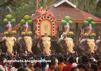 elephants-thrissur,kerala-festivals,elephant-festival,hindu-temple-festivals,kerala-elephants,pooram-elephants,elephant-ornaments,kerala-domestic-elephants,thrissur-temple-festivals,thrisur-poorams,kerala-cultural-festivals