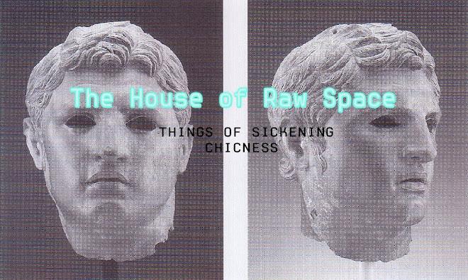 TheHouseofRawSpace