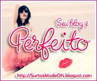 Selo Seu blog é Perfeito