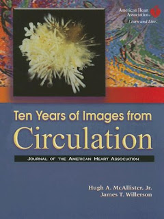 Ten Years of Images from Circulation