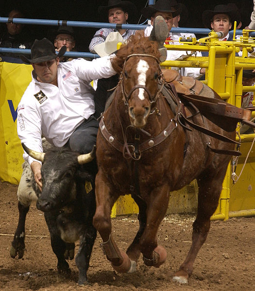 Toros Asesinos http://elactivista.espivblogs.net/category/corridas-de ...
