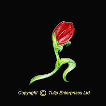 Tulip Enterprises www.tulipenterprises.co.uk