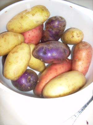 Wait! Aren't Purple Potatoes Really Odd?