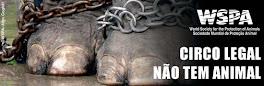 Circo sem animais