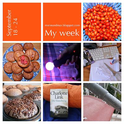 My week 5