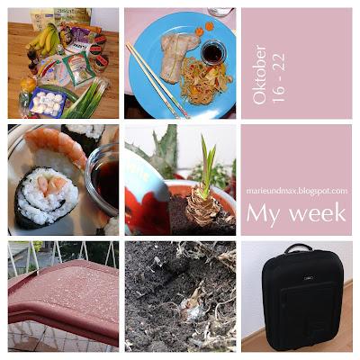 My week (9)