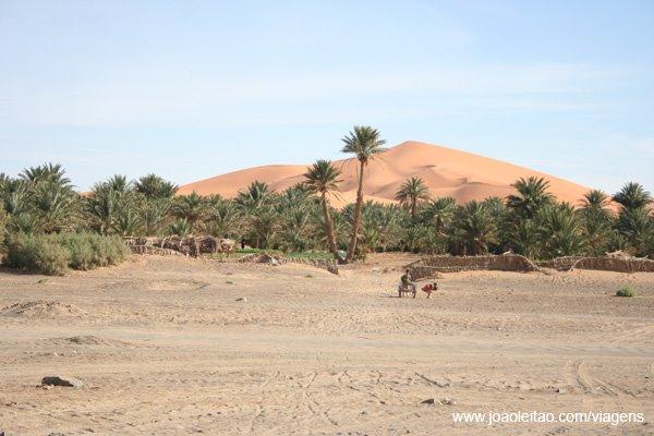 [vista-oasis-duna-hassilabied.jpg]